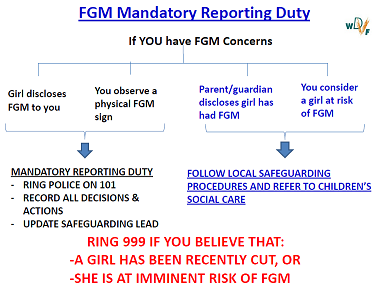 fgm m reporting 50